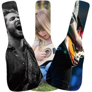 Guitar Bag - Acoustic Guitar